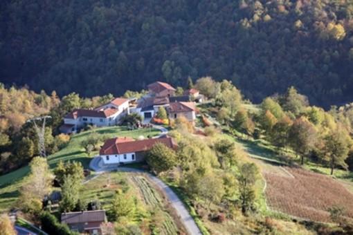 L'estate di San Martino a Paroldo: cultura, gastronomia e tradizioni  si incontrano il 9,10 e 11 novembre