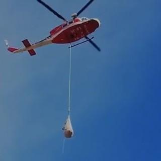 I Vigili del Fuoco intervengono a Sant'Anna di Bellino per salvare una mucca ferita [VIDEO]