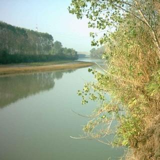 Il fiume Tanaro, foto di repertorio