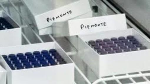 Altri 10.280 vaccinati oggi in Piemonte: il totale è di 426mila
