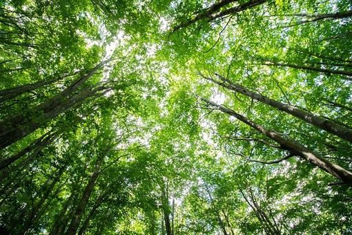 A Cuneo due giorni di incontri per parlare di cambiamenti climatici