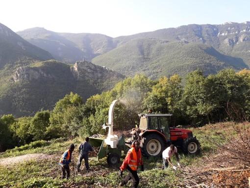 Dichiarazione per i diritti dei contadini: a Mondovì si spiega il documento approvato dall'ONU