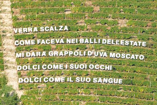"""Castiglione Tinella apre il suo Parco Panoramico-Letterario """"Versi in Vigna"""" e diventa """"Il Paese delle Vigne Scritte"""""""